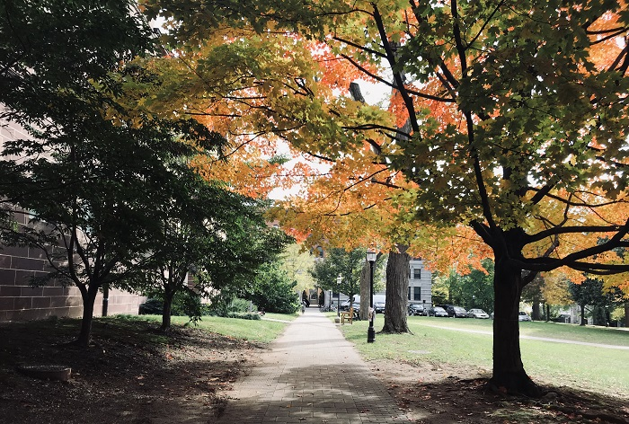 Princeton Campus in the fall