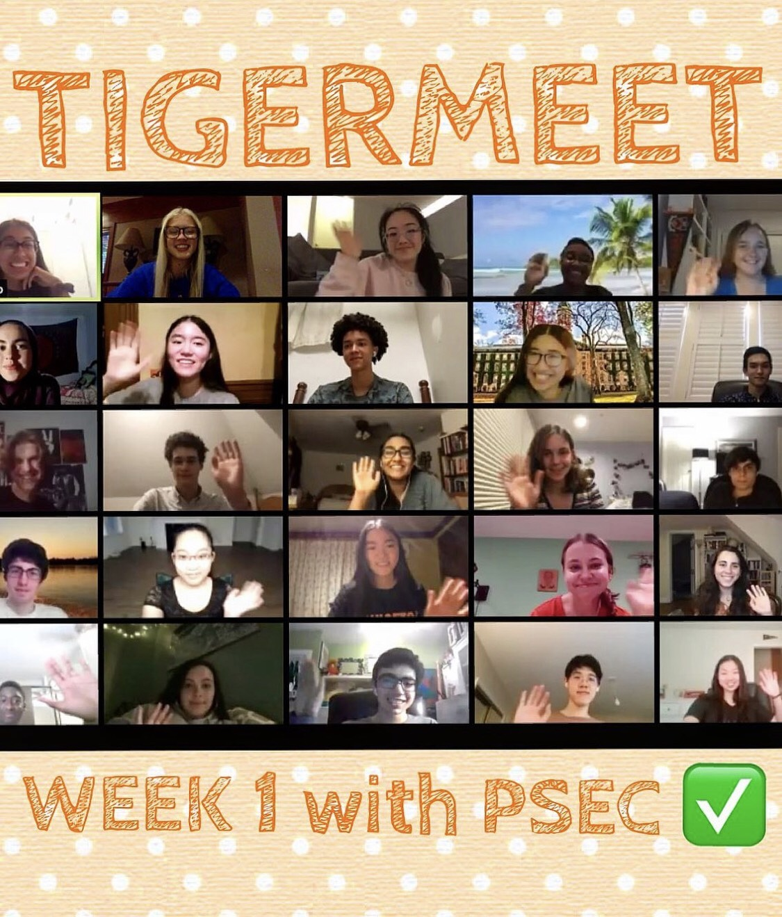 students on Zoom participating in TigerMeet