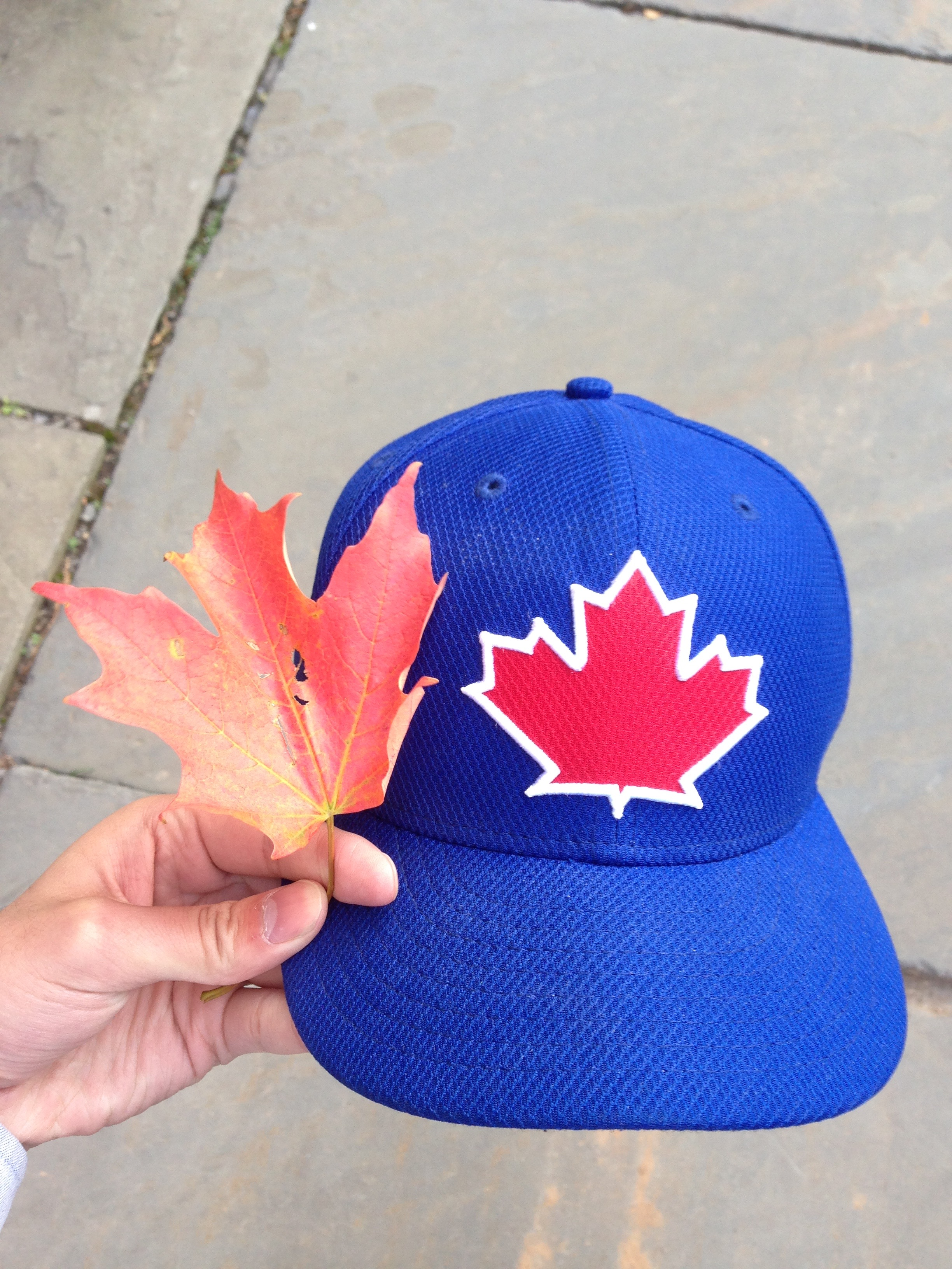 A photo of a blue hat with a maple leaf, next to a real maple leaf