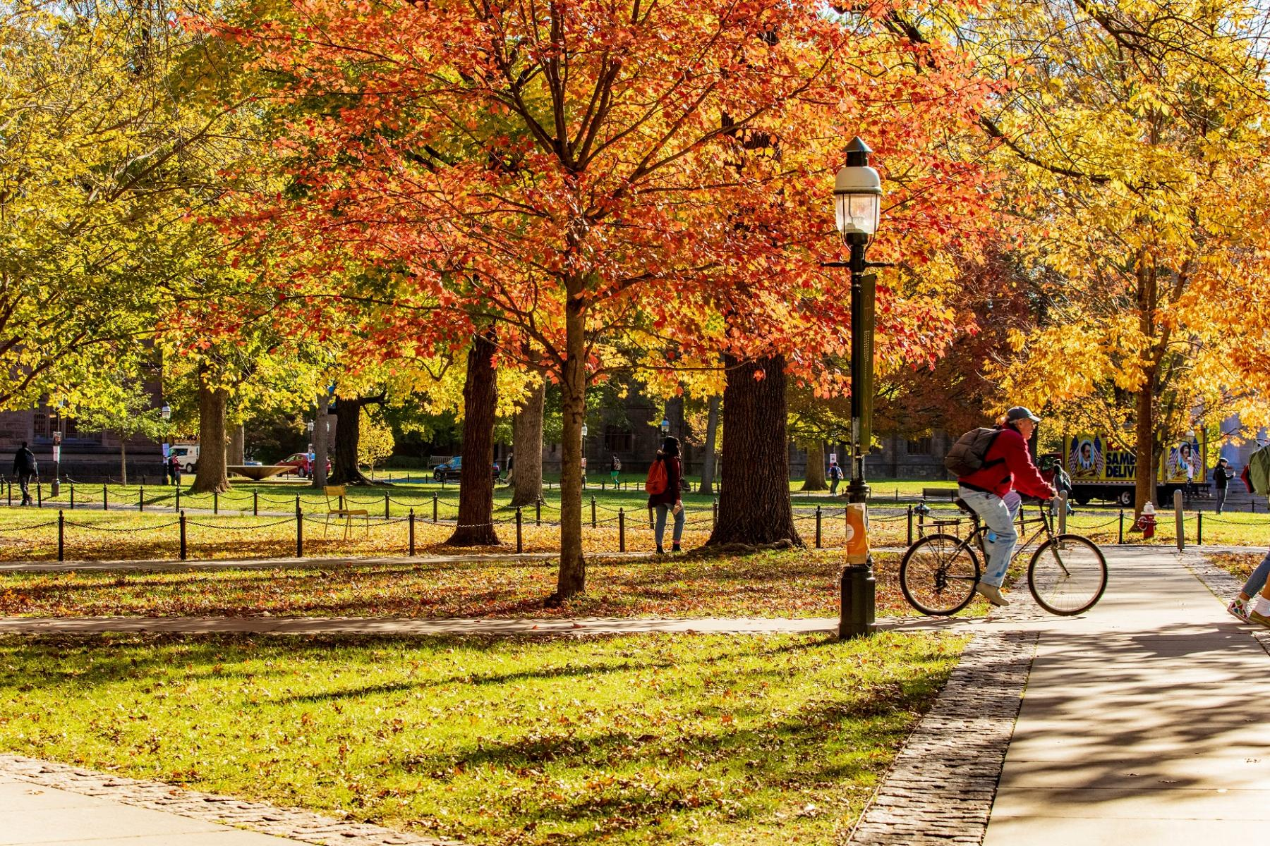 Fall day on campus