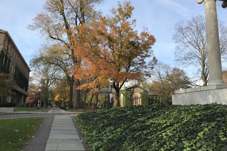 Upper Campus in Fall