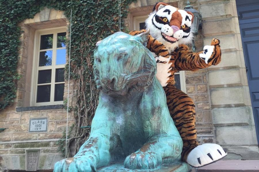 Tiger mascot hanging out by Nassau Hall