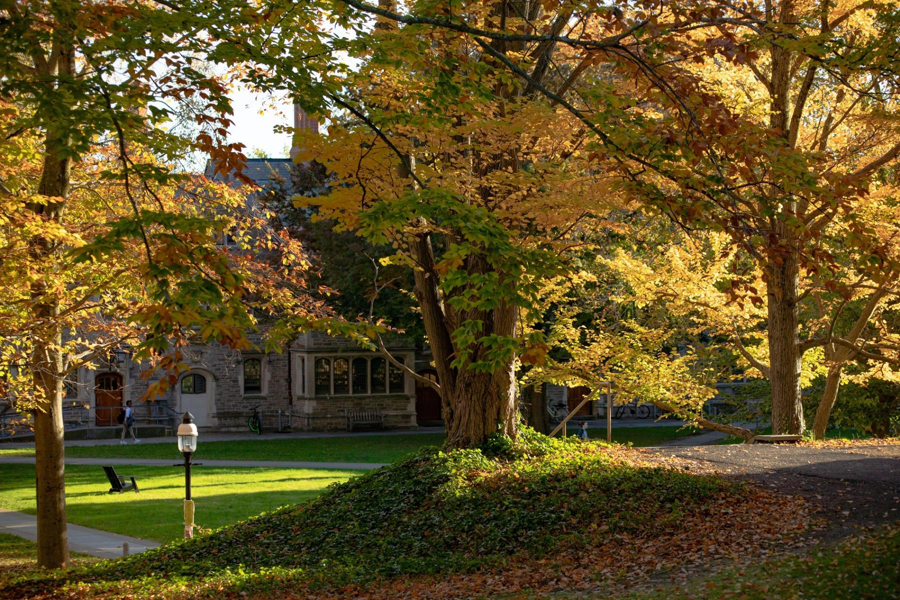 Autumn campus courtyard