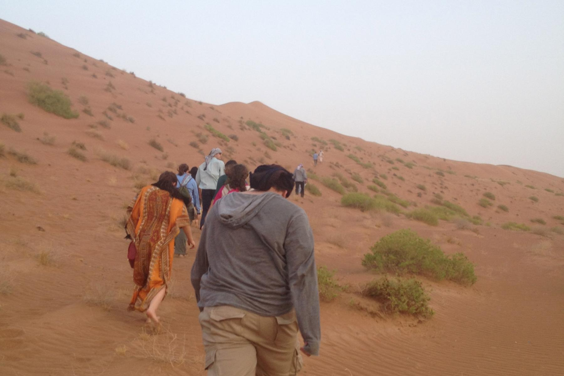 A group of students walking in a line up a sand dune.