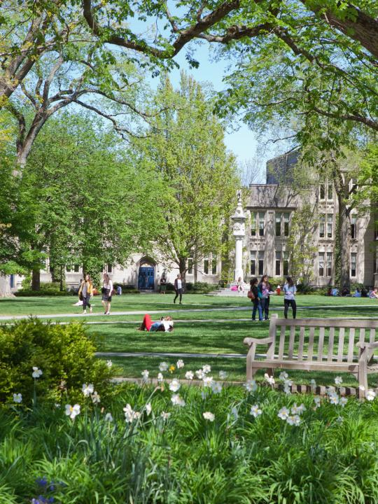 princeton majors and minors sites that write papers for you